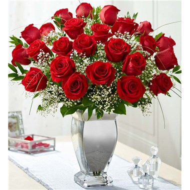 PREMIUM_LONG_STEM_RED_ROSES_SLV_VASE_L
